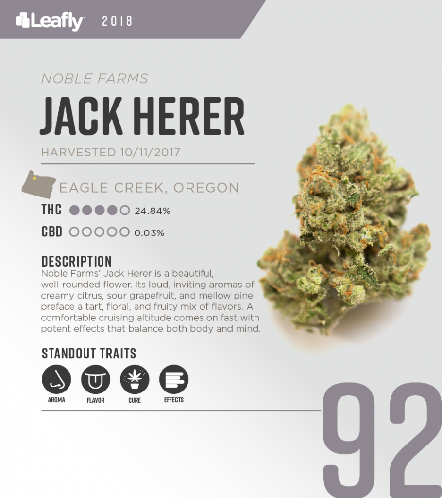 High-THC weed strains in Oregon: Jack Herer