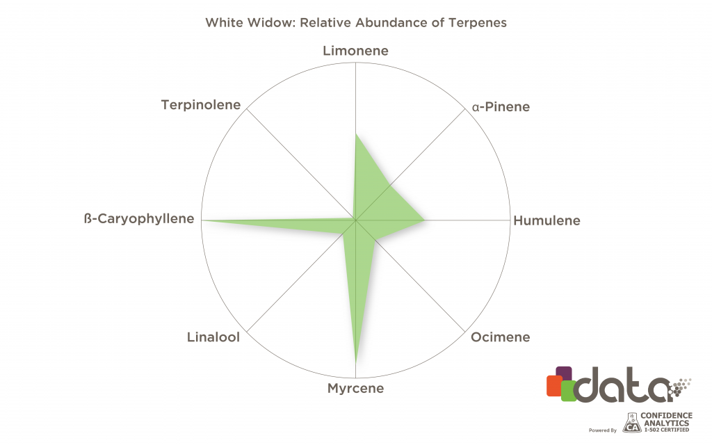 Best terpenes for anxiety: Myrcene & caryophyllene in White Widow