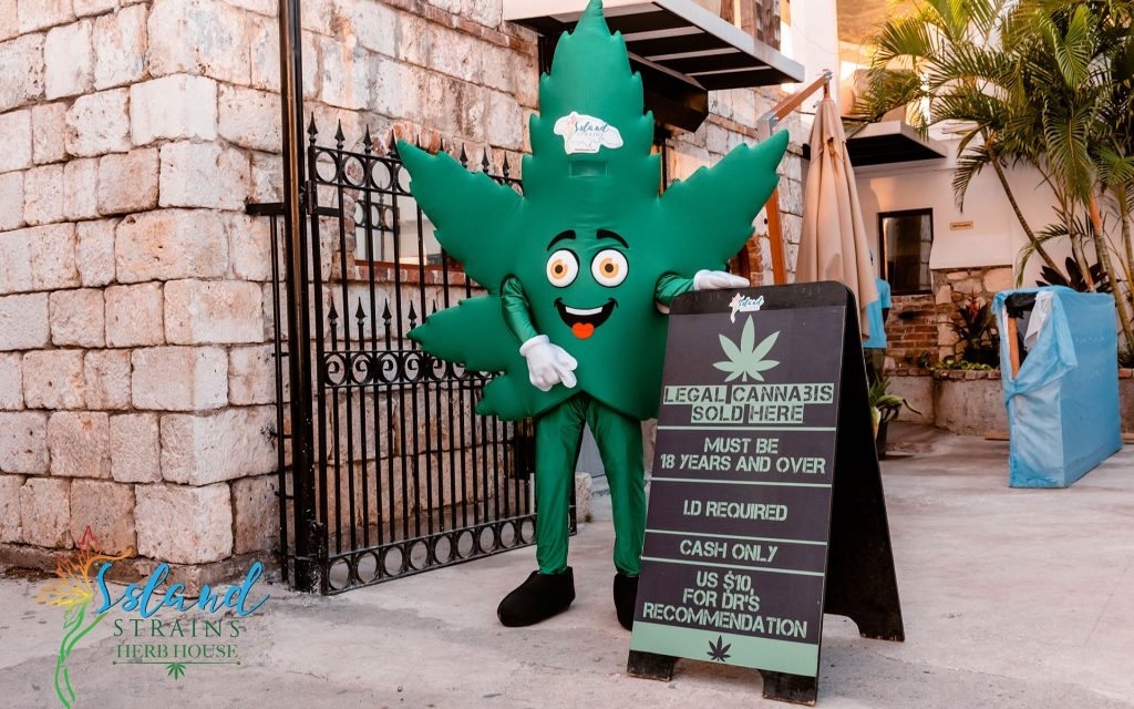 Dispensaries for marijuana in the Caribbean: Island Strains Herb House in Jamaica