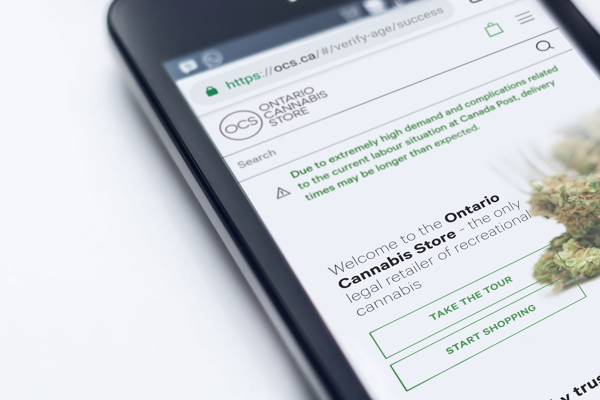 4,500 Ontario Cannabis Store Customers Affected by Privacy Breach thumbnail