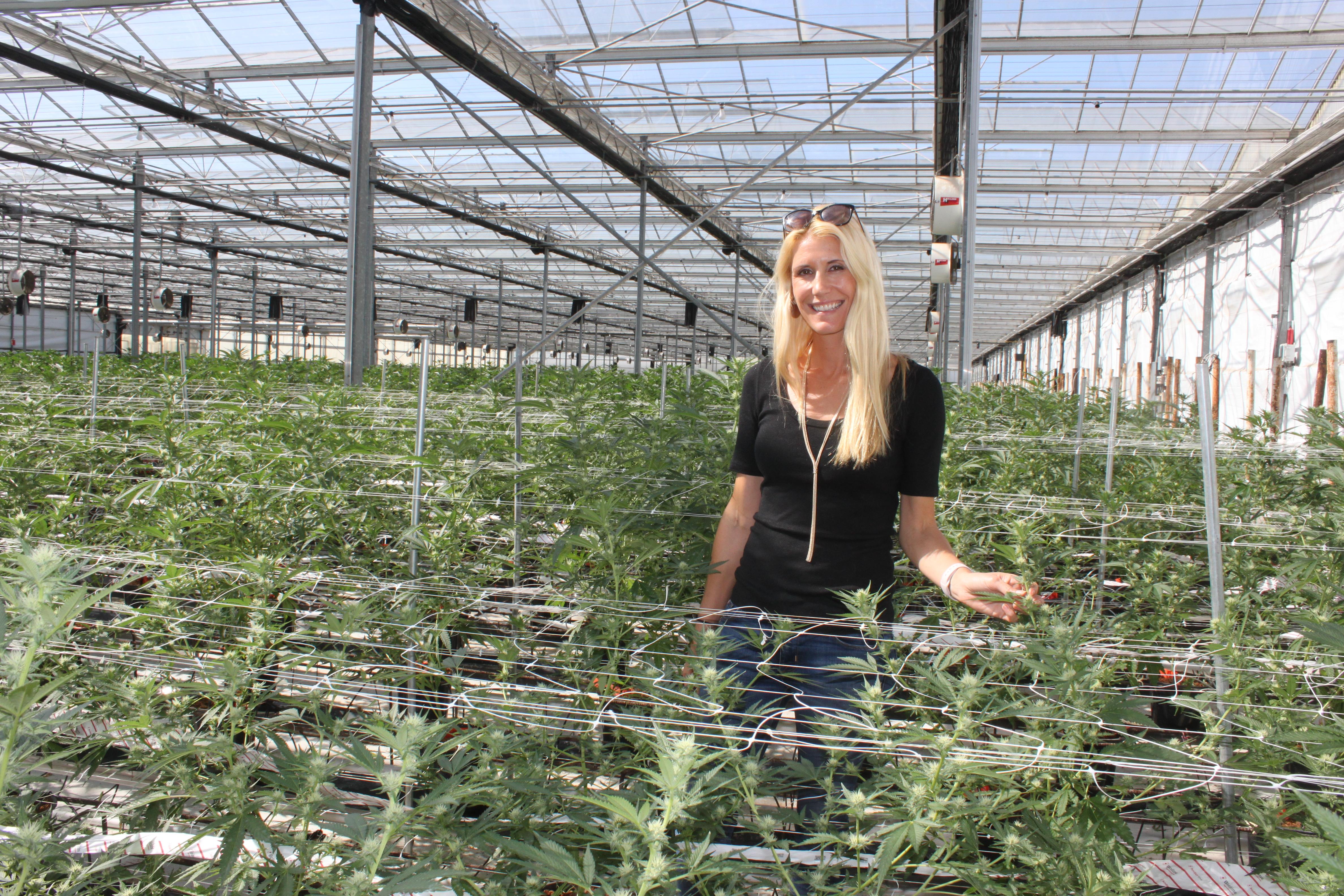 Why Santa Barbara's Idyllic Wine Country Embraced Cannabis