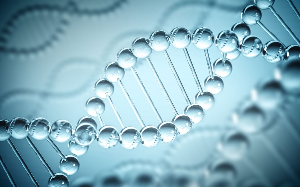 Cannabis Genome