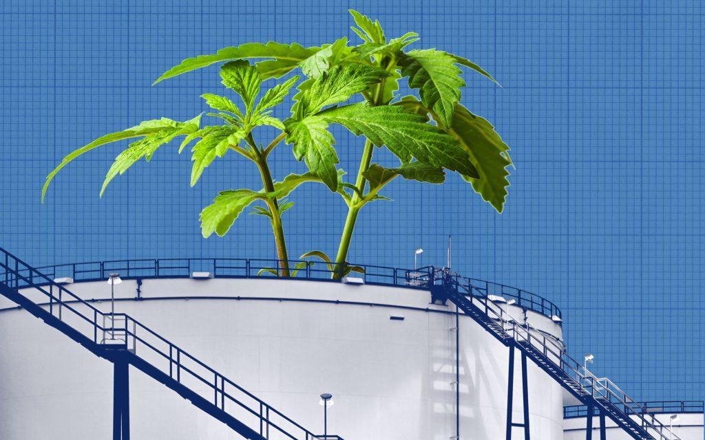 Crude to Cannabis alberta Economy