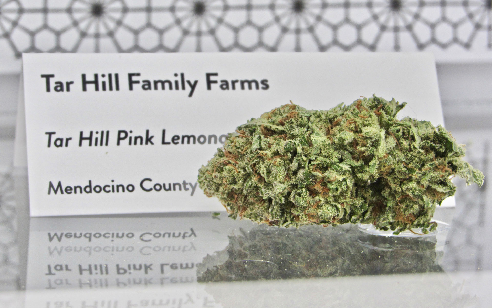 Award winning Tar Hill Pink Lemonade Emerald Cup 2018 (David Downs/Leafly)