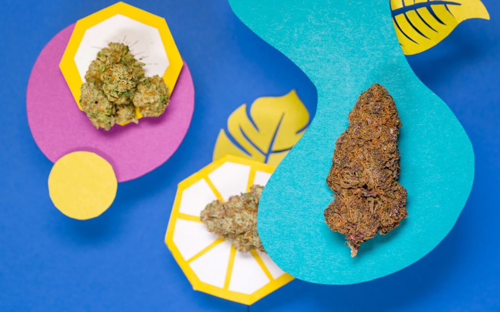Counting Down the Top 5 Trending Cannabis Strains of 2018