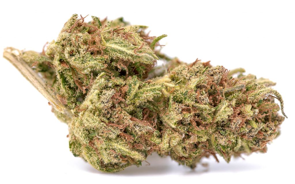 Nothing's Fresher Than These 5 Sun-Grown Strains in Oregon