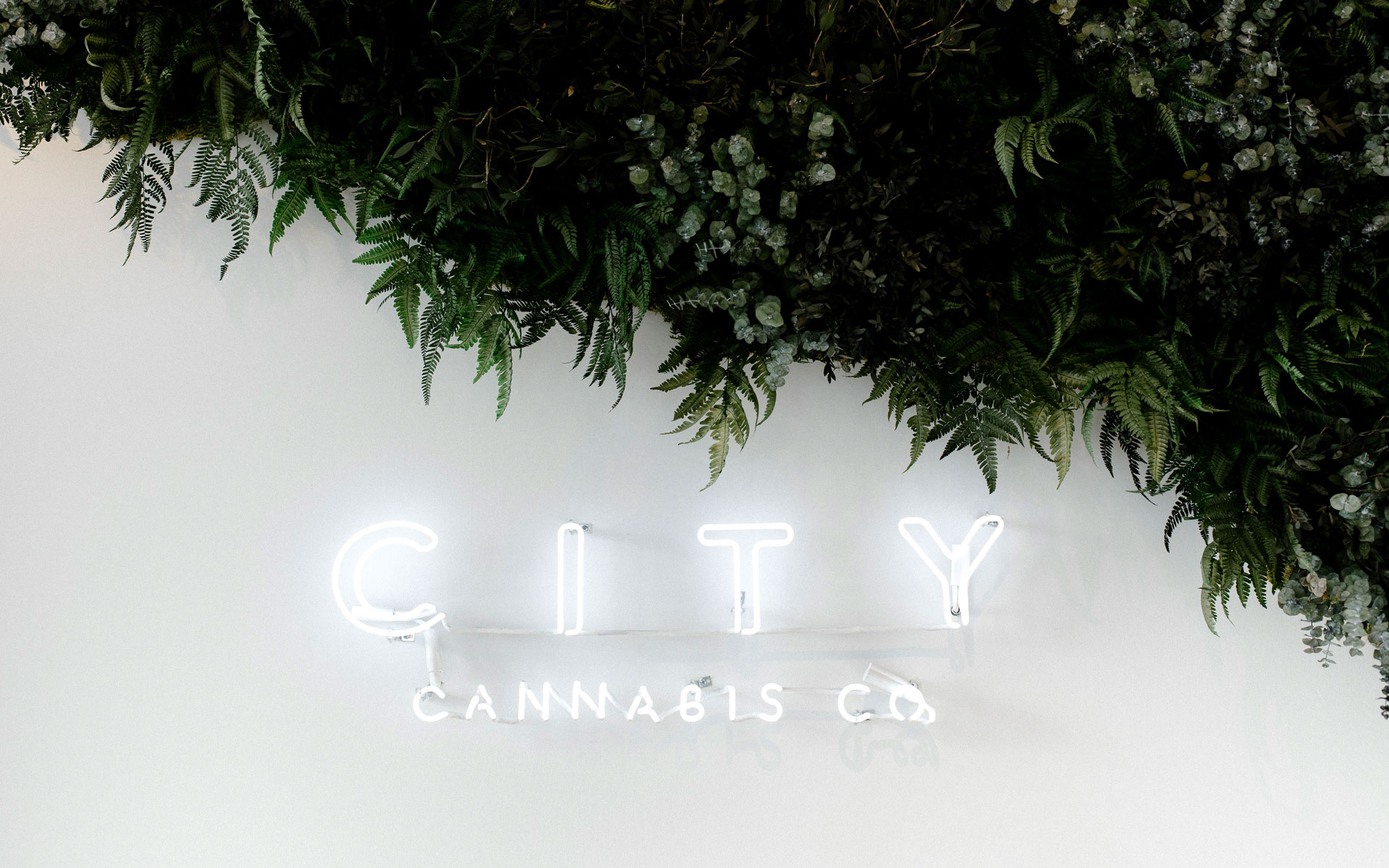 Retail Guide: City Cannabis Co., Fraser Street, Vancouver