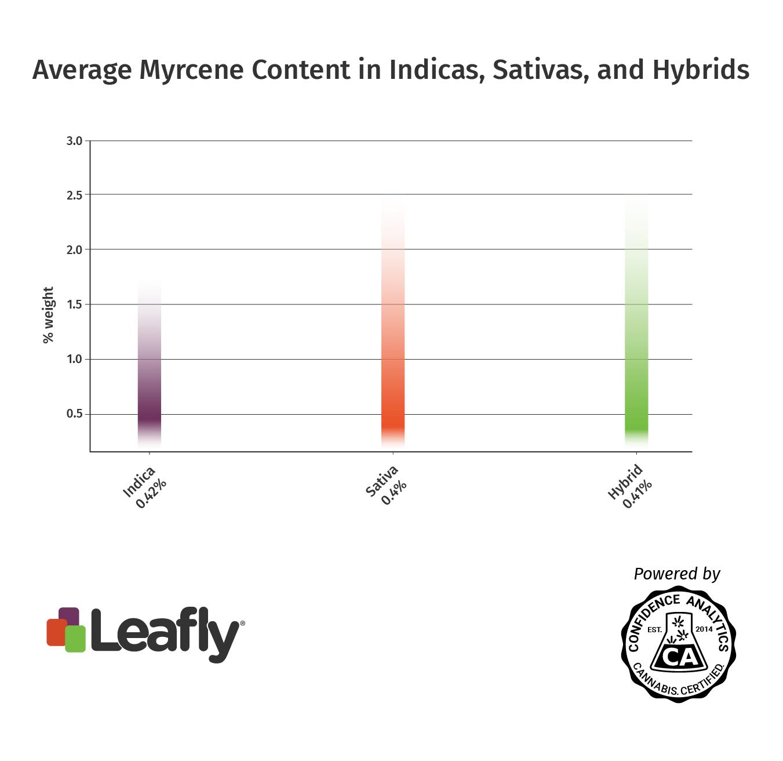Myrcene chính là terpene trong cần sa giúp ngủ sâu 5