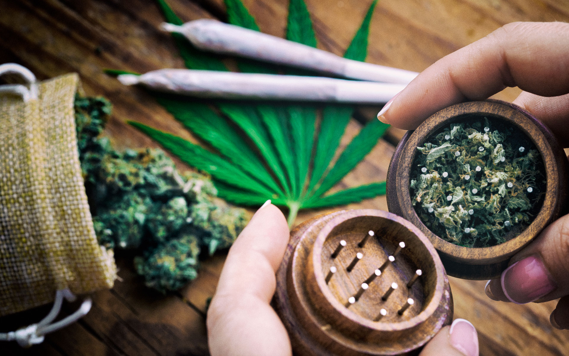 hemp CBD cannabis in grinder and joints