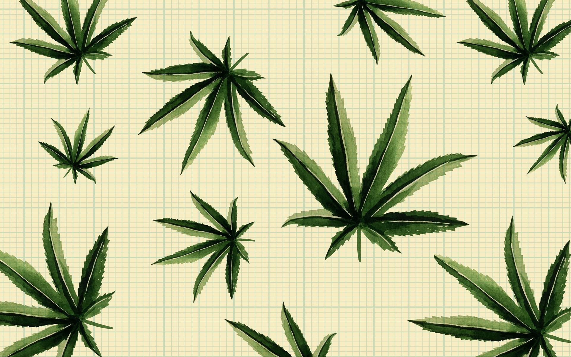 Are High-CBD Hemp Flowers the Next Big Thing in Cannabis