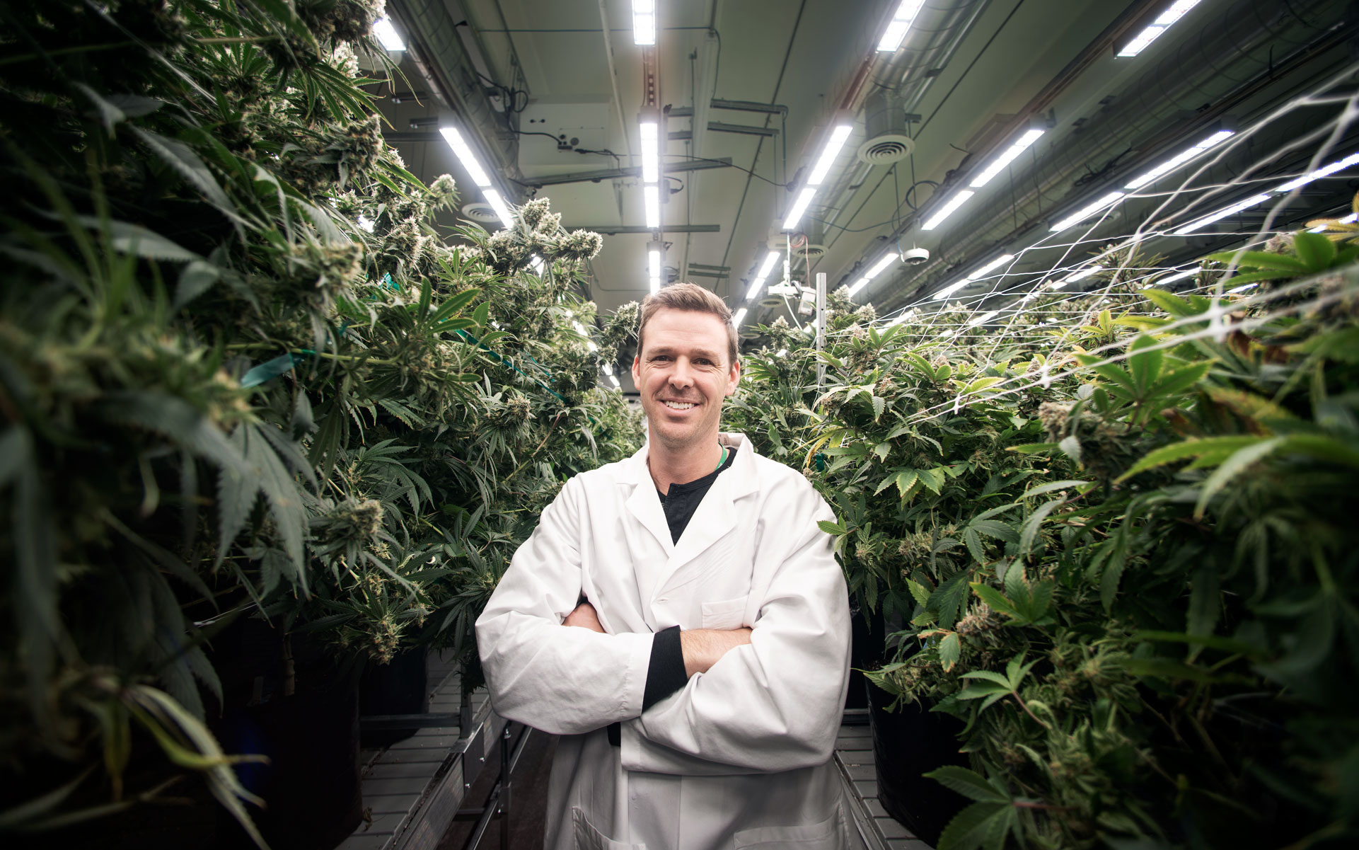 CEO Todd Brady in RX Green's research cannabis grow