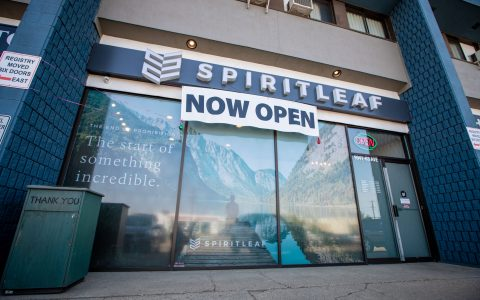 Illicit Toronto Dispensary Refuses to Be Stonewalled