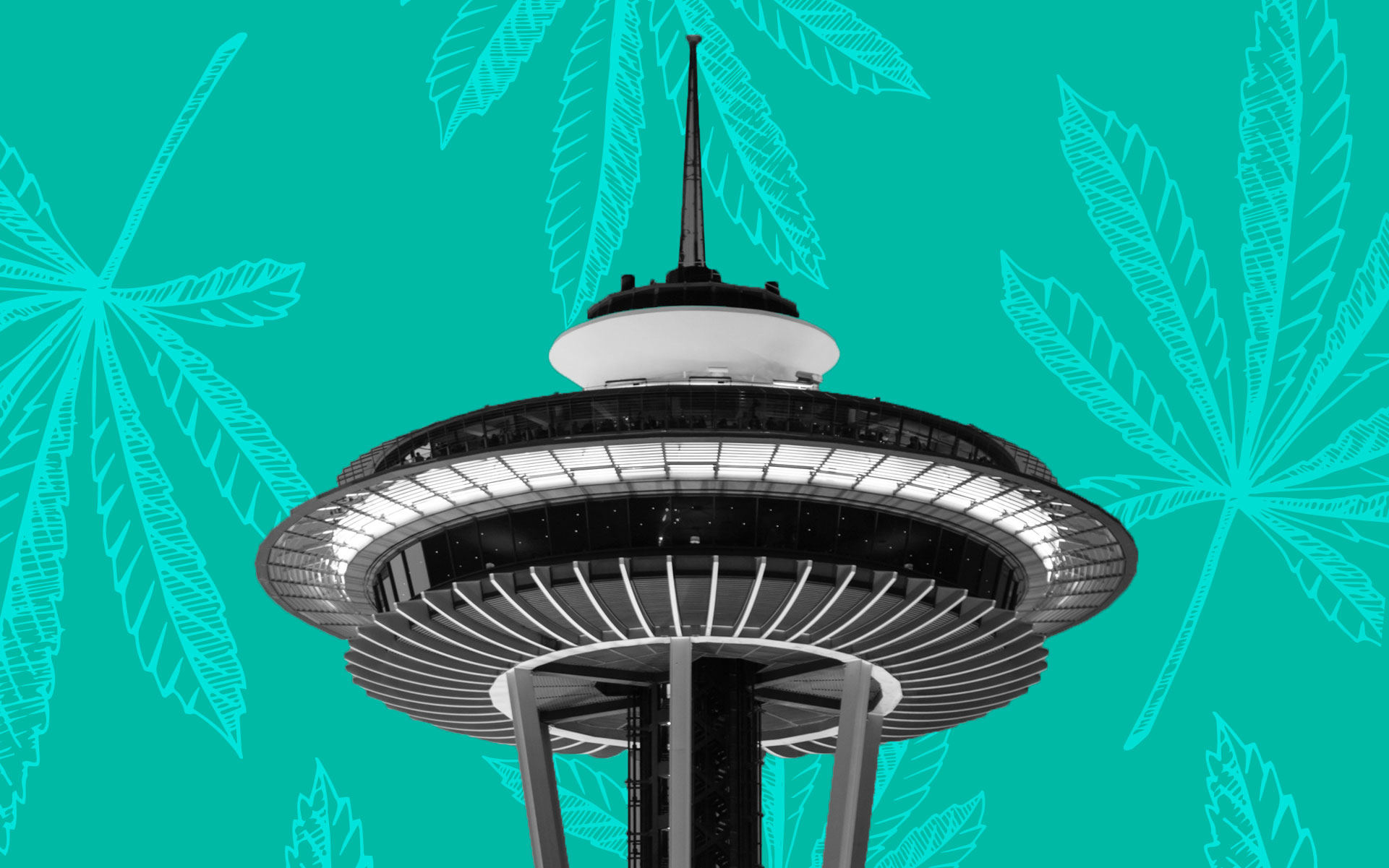 Seattle area is number one in global marijuana use, study finds.