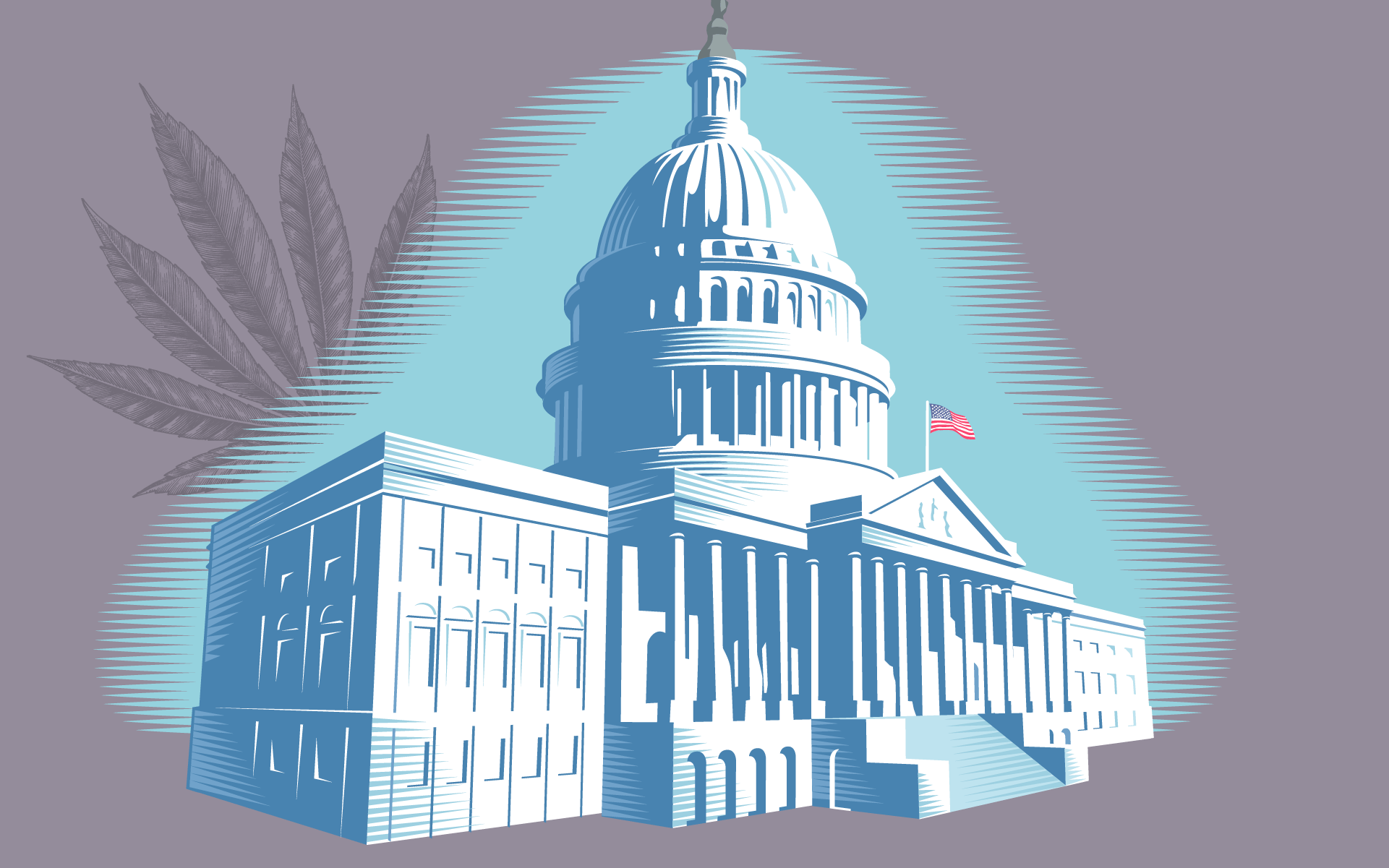 Congressional Committee Discusses How to Legalize Cannabis thumbnail