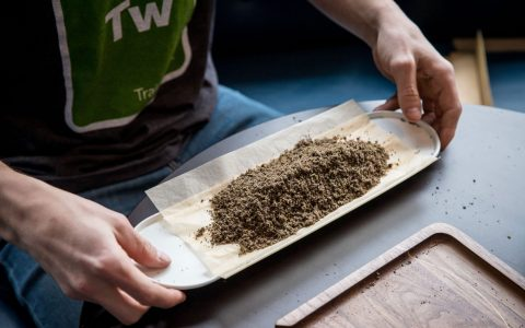 post-image-Kitchener Cannabis Festival Hopes to Roll World's Longest Joint