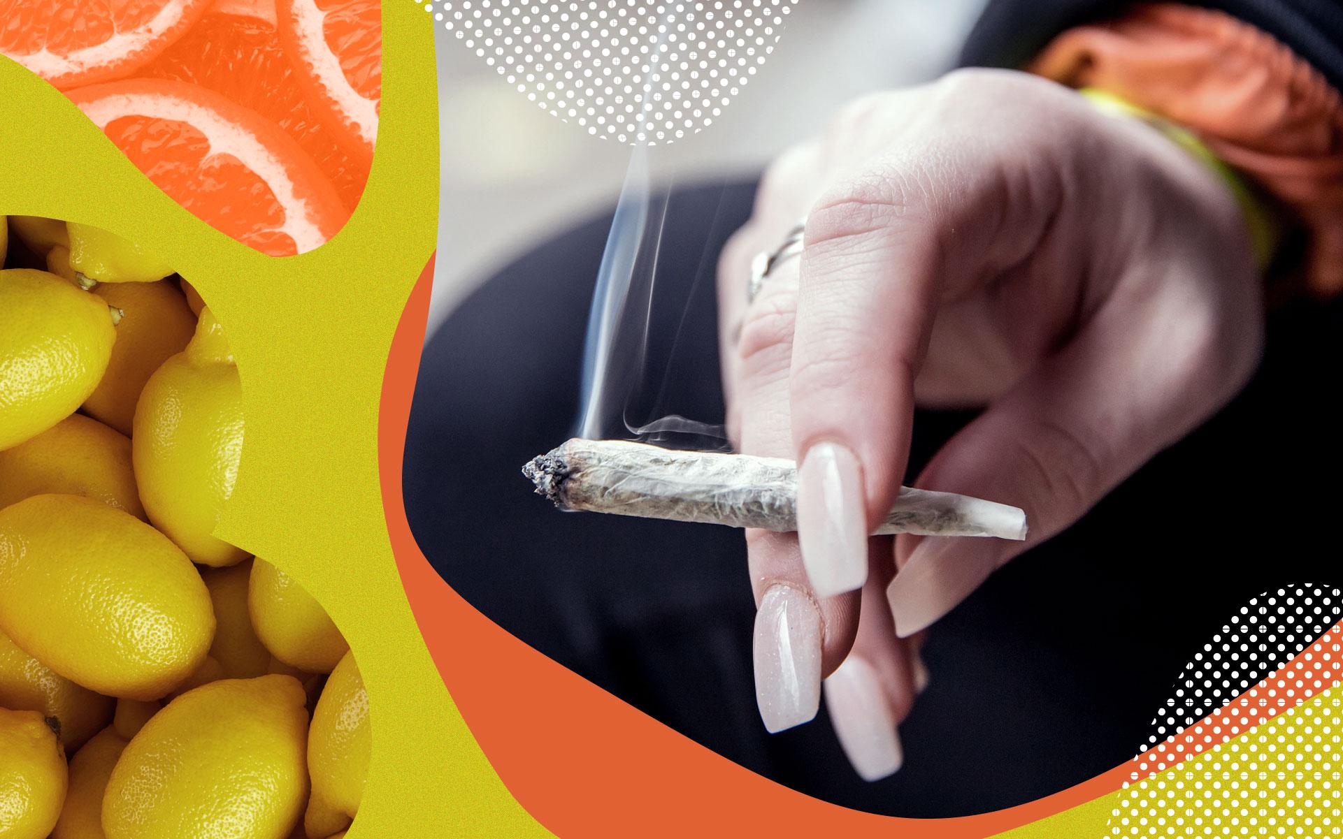 limonene terpene joint
