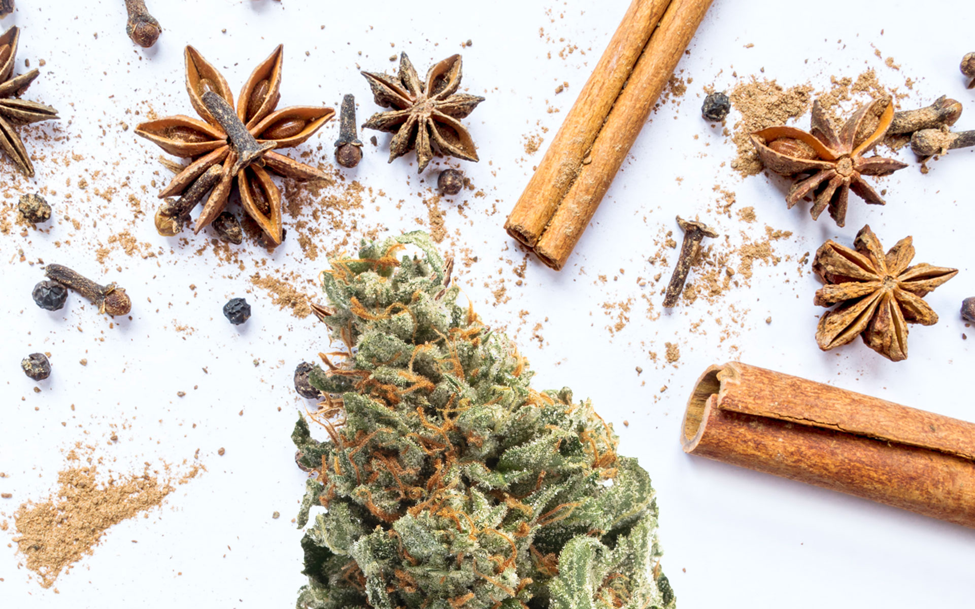 6 Cannabis Strains for People Who Love Fall Spice Terpenes thumbnail
