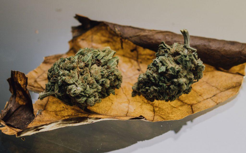 blunts, tobacco paper, cannabis