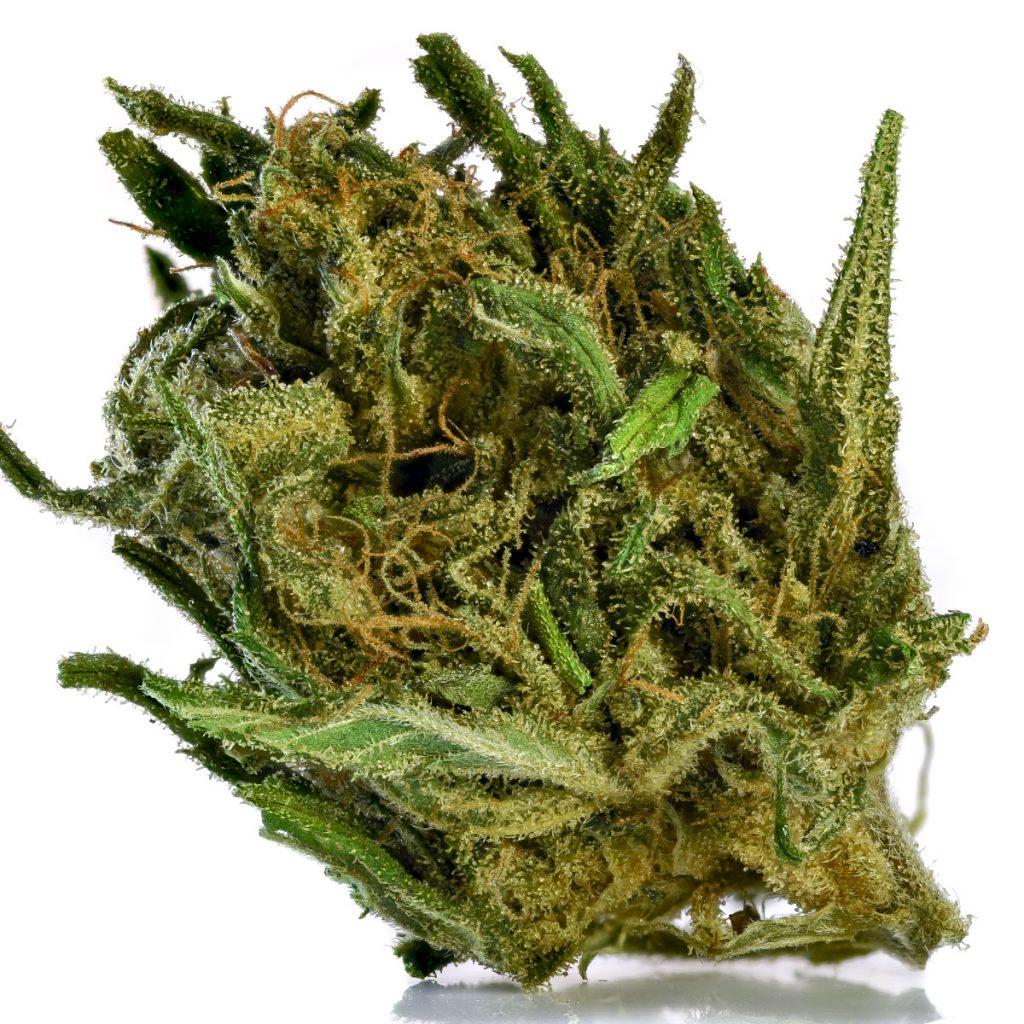 , We Tried the CBD Hemp Flowers You Can Buy Online. Here's How They Smoked, Styding CBD, Styding CBD