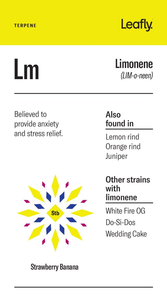 Cannabis Terpenes And What Do They Do