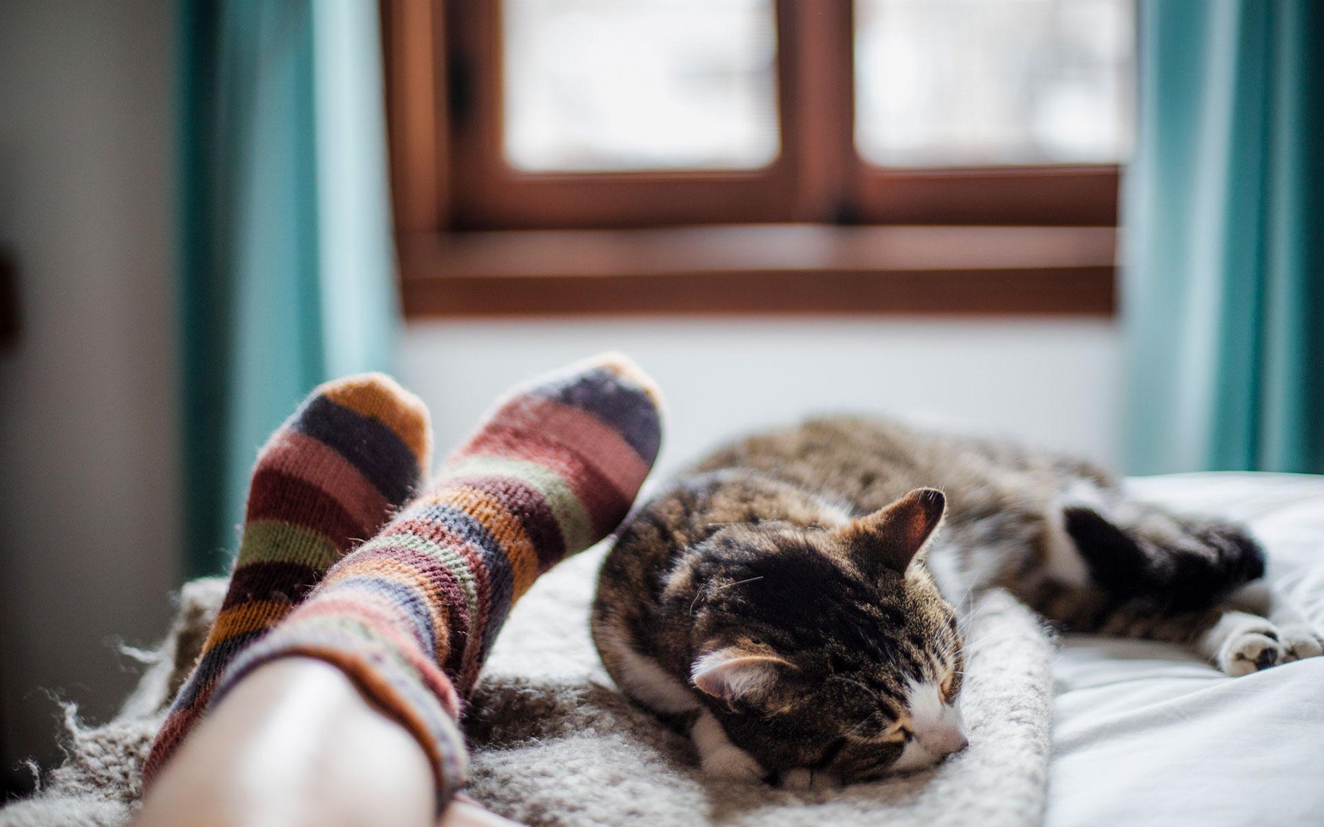 9 điều cần biết về THC - CBD ảnh hưởng tới giấc ngủ của bạn 3