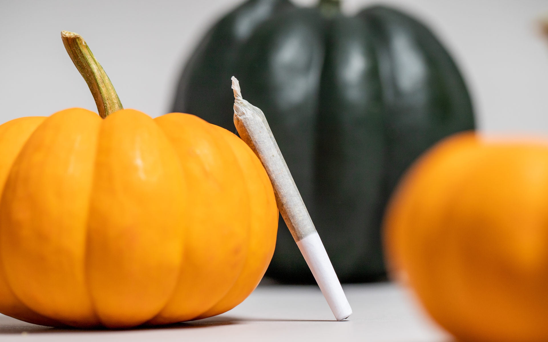 reasons to be thankful, pumpkins and a preroll