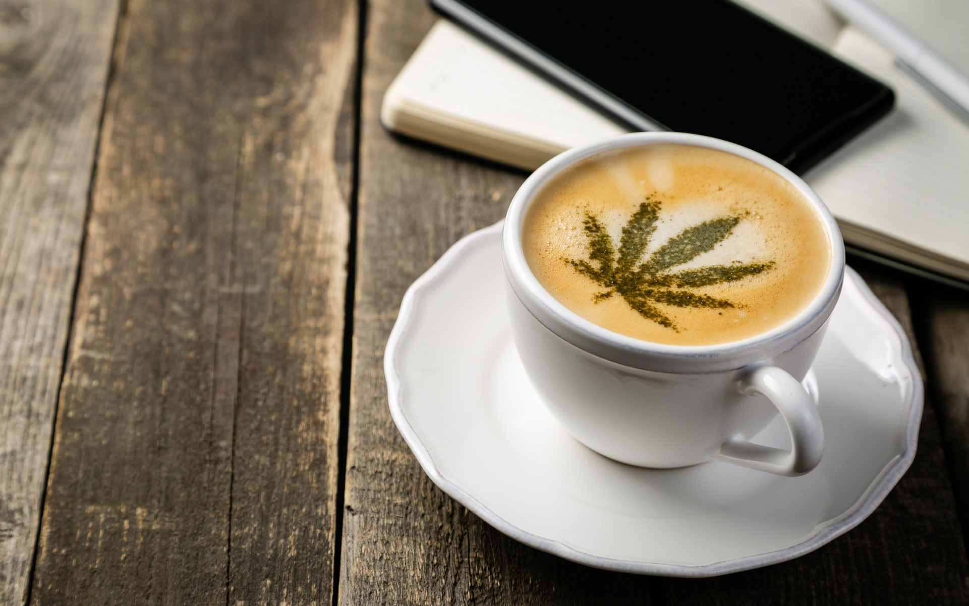 Second Cup Coffee undergoes rebrand ahead of cannabis expansion thumbnail