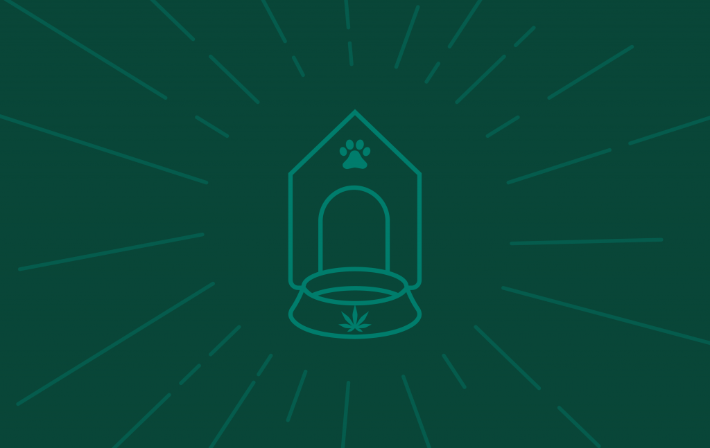 CBD safe for pets