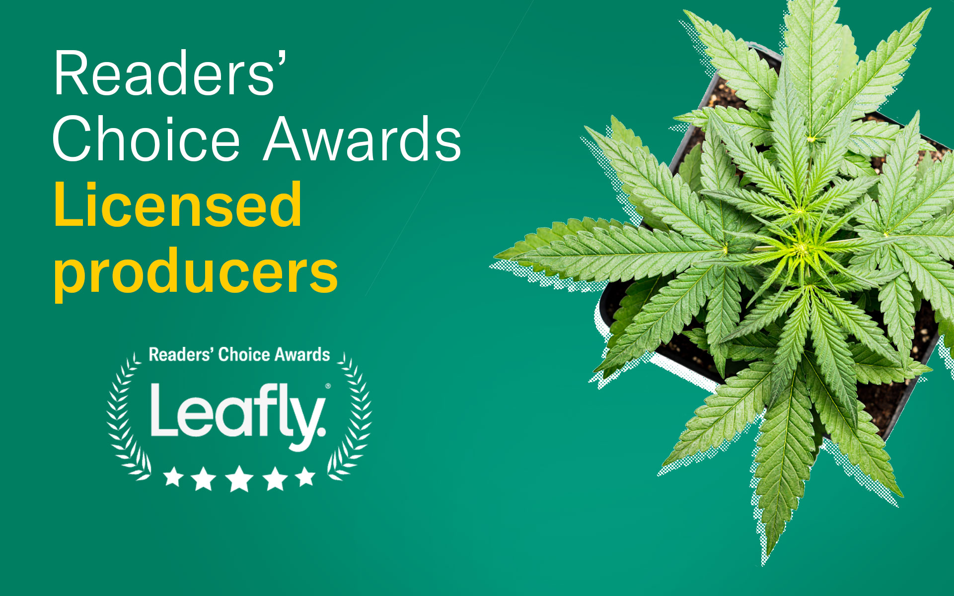 leafly canada readers choice licensed producer winner