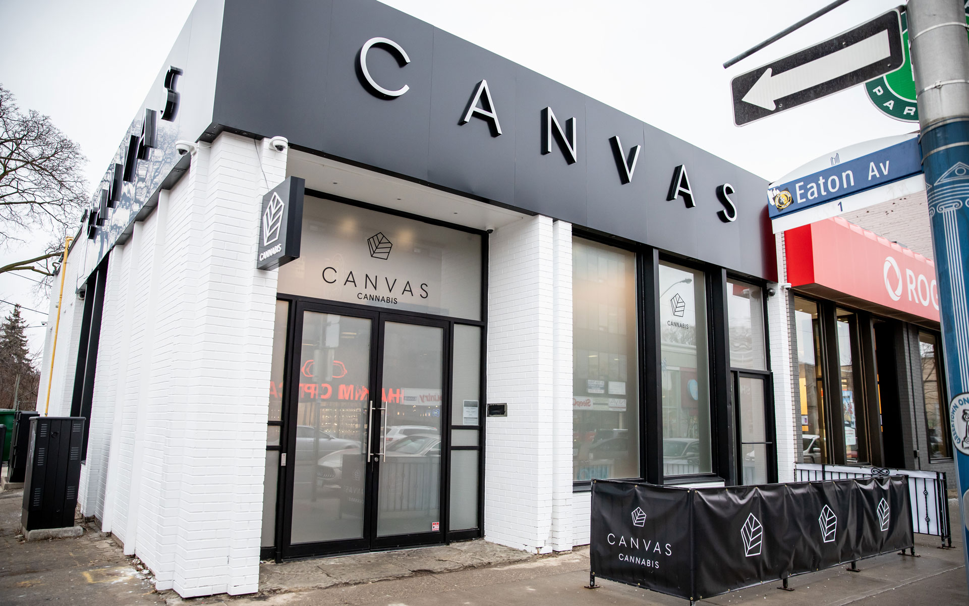 canvas cannabis toronto