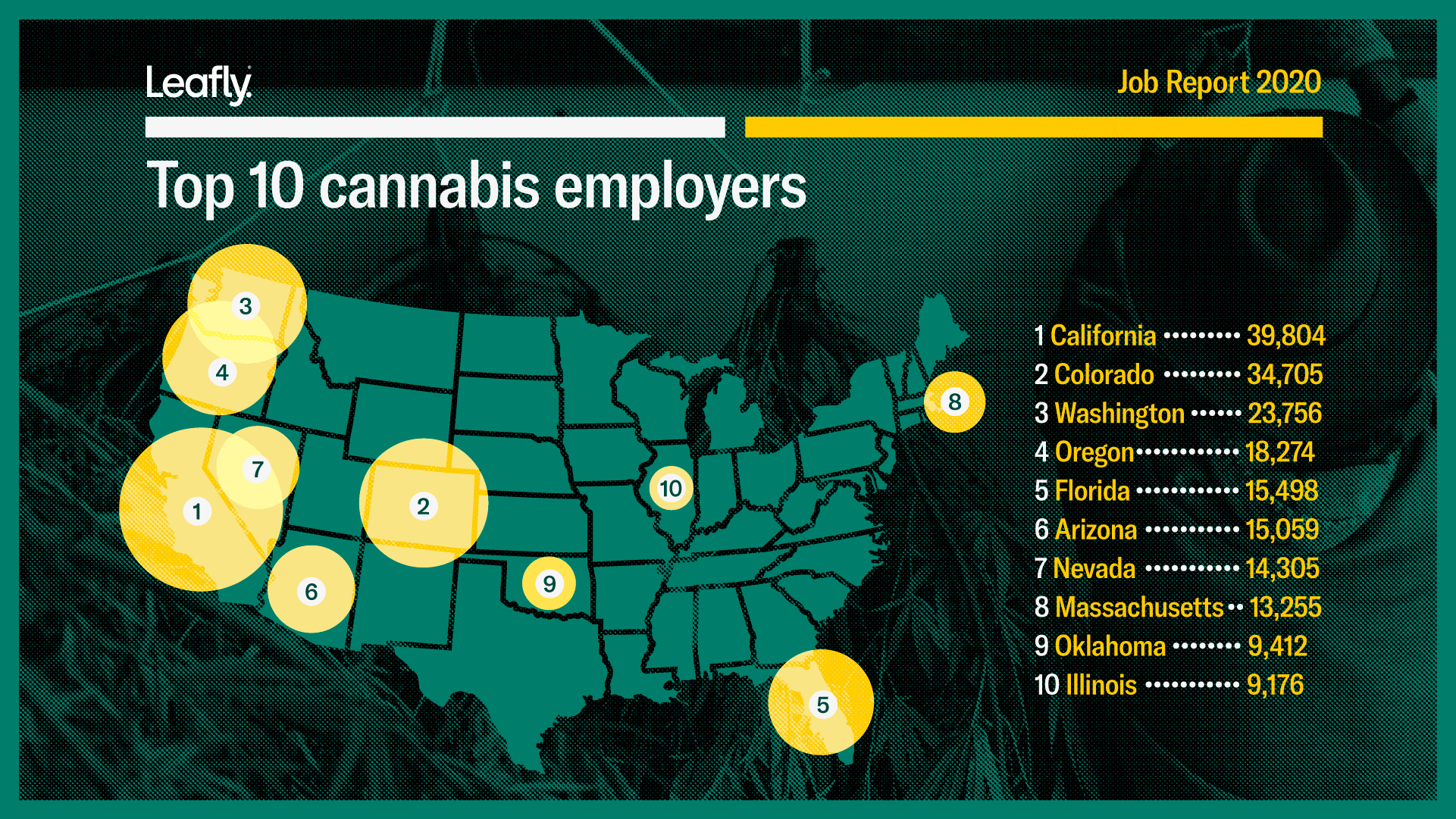 how many cannabis jobs are there in america, top ten cannabis employers, cannabis jobs count