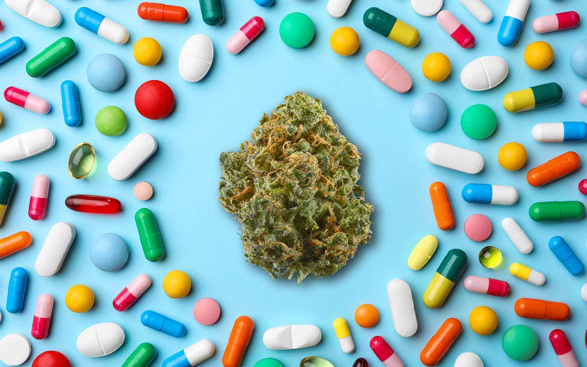 doctors prescribing marijuana