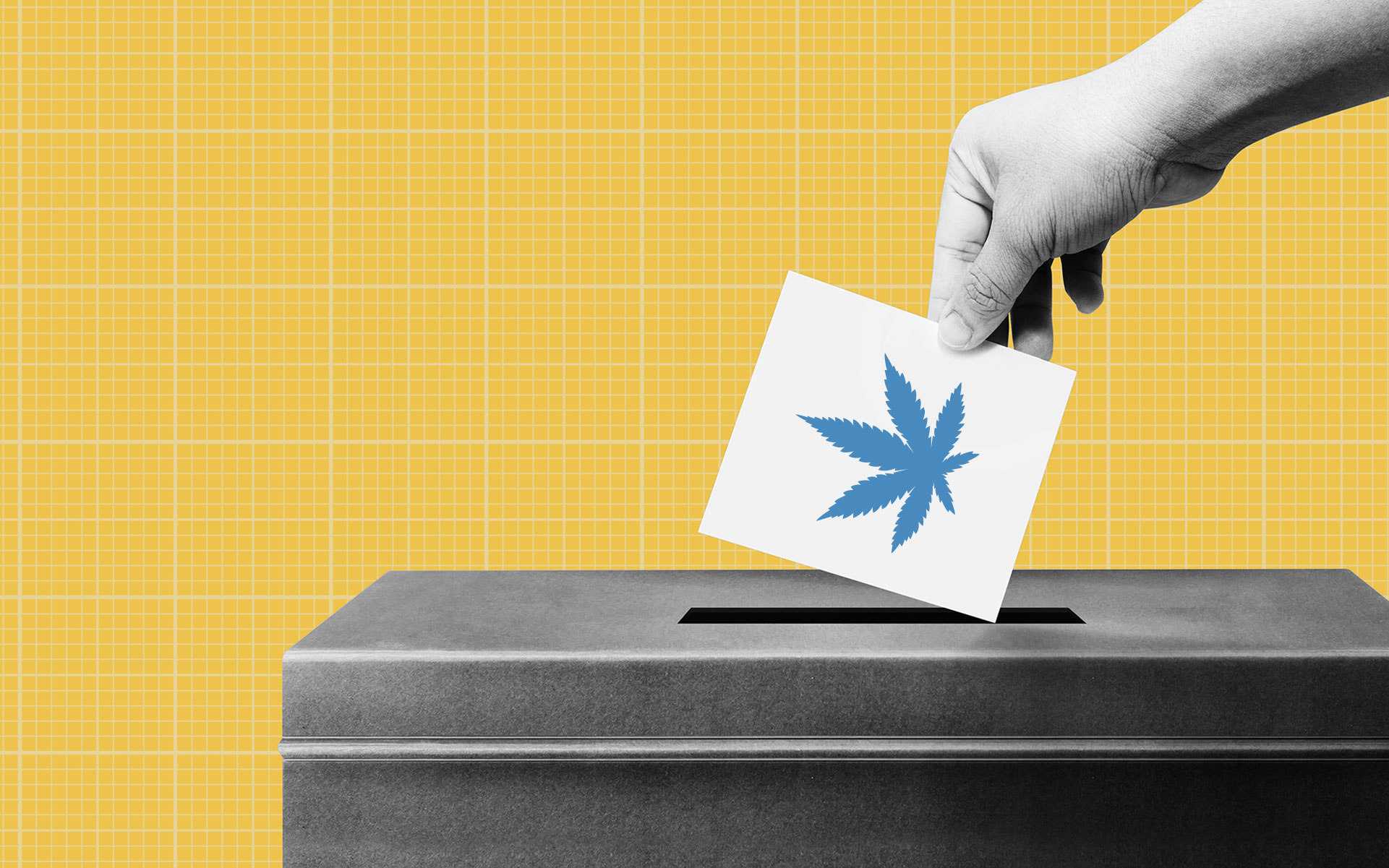 Election 2020: All you need to know about cannabis legalization on the ballot