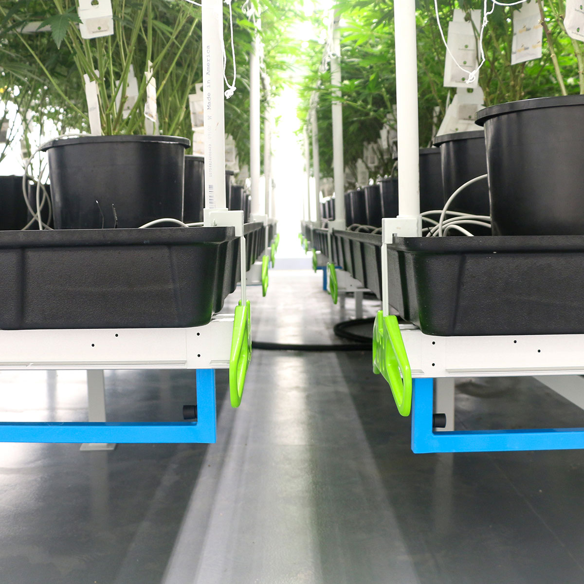 cannabis grow equipment, cannabis commercial lighting fixtures, growing marijuana, cannabis grow operational supplies