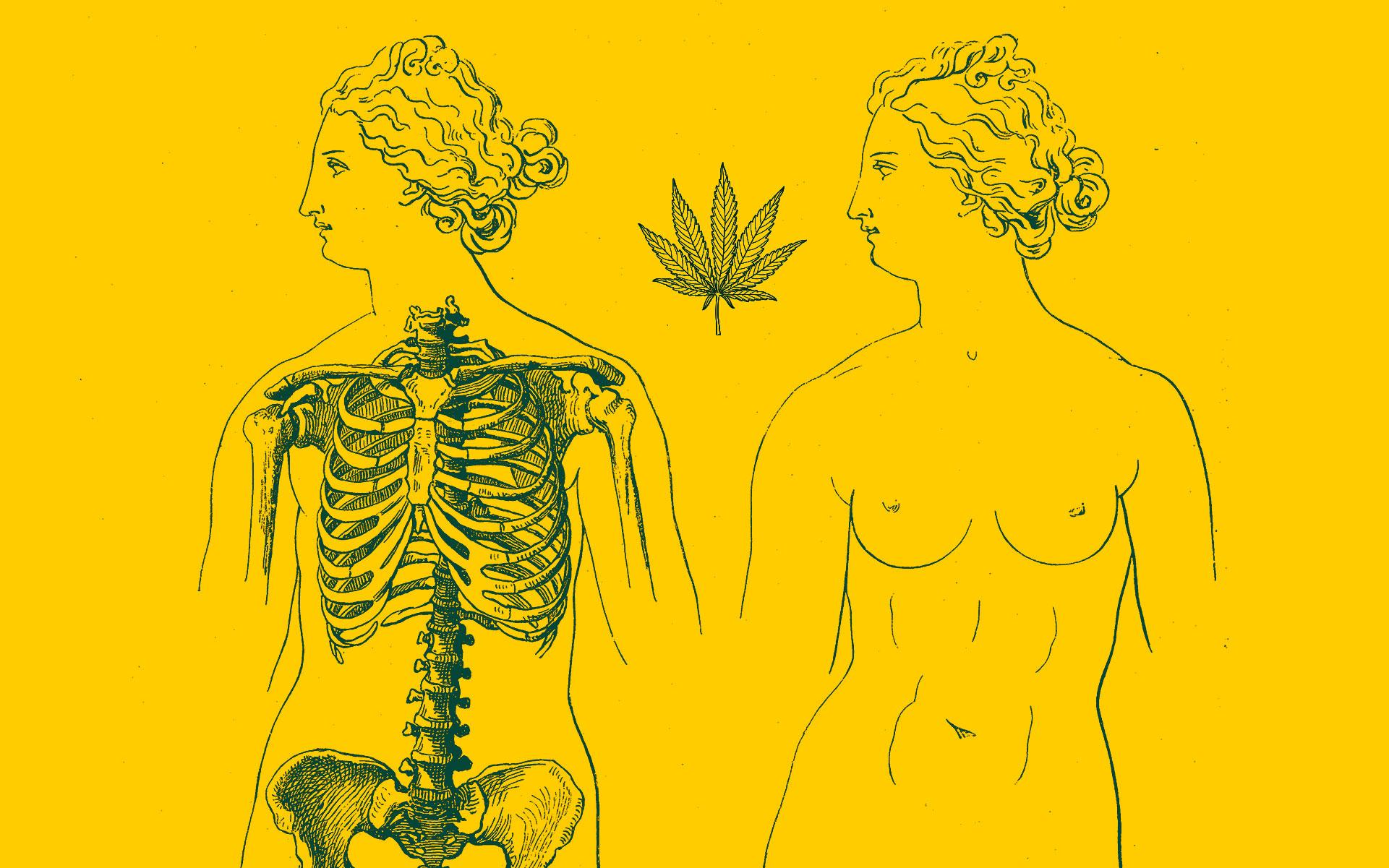 cannabis and women's health