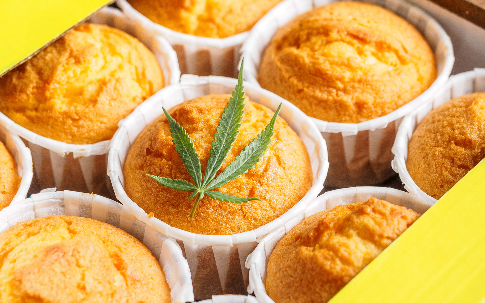 making cannabis edibles