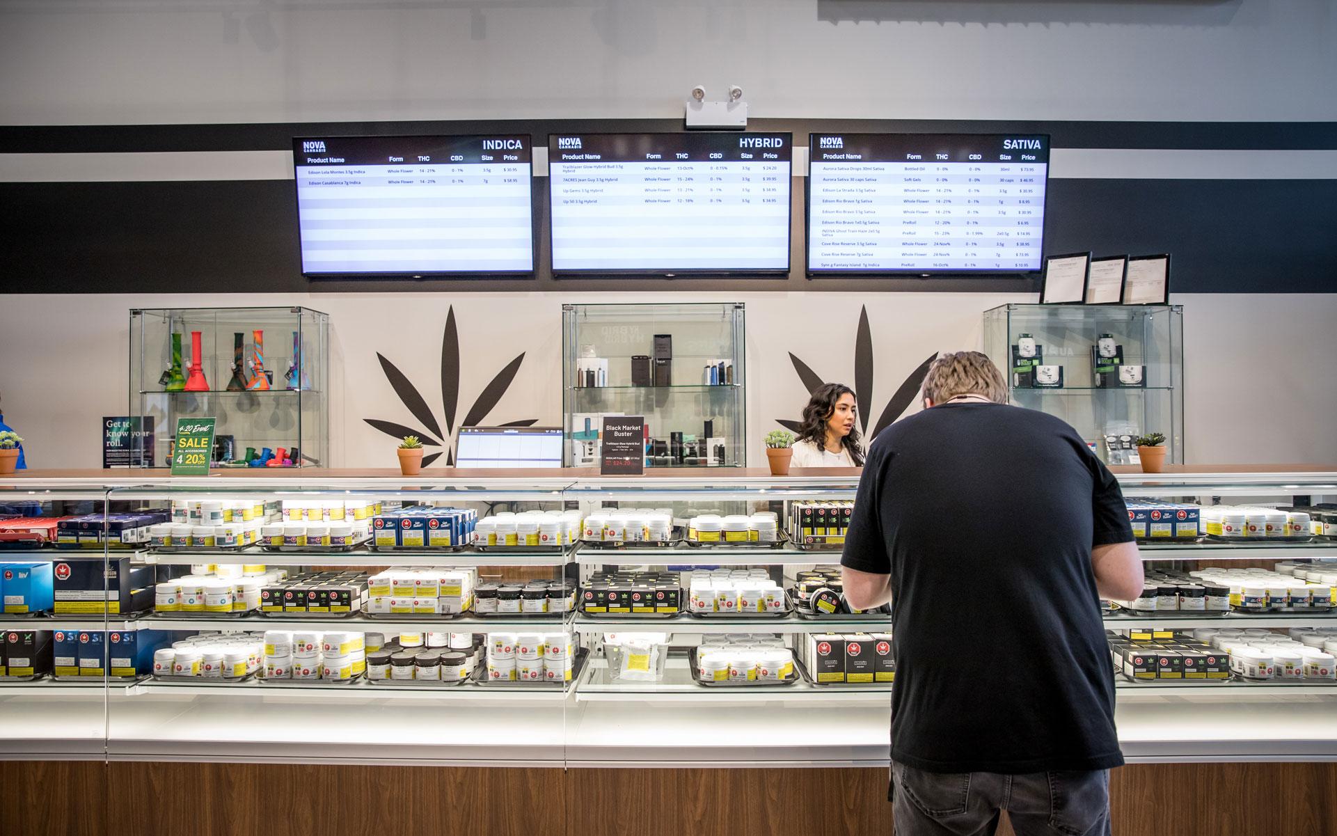 cannabis retail panic-buying shortage